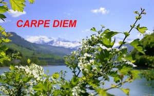 Carpe Diem Logo March 2013